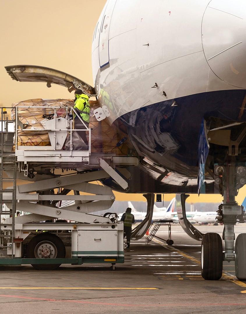 Optimize Your Global Logistics